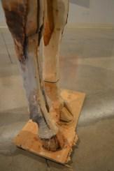 Wooden Colt